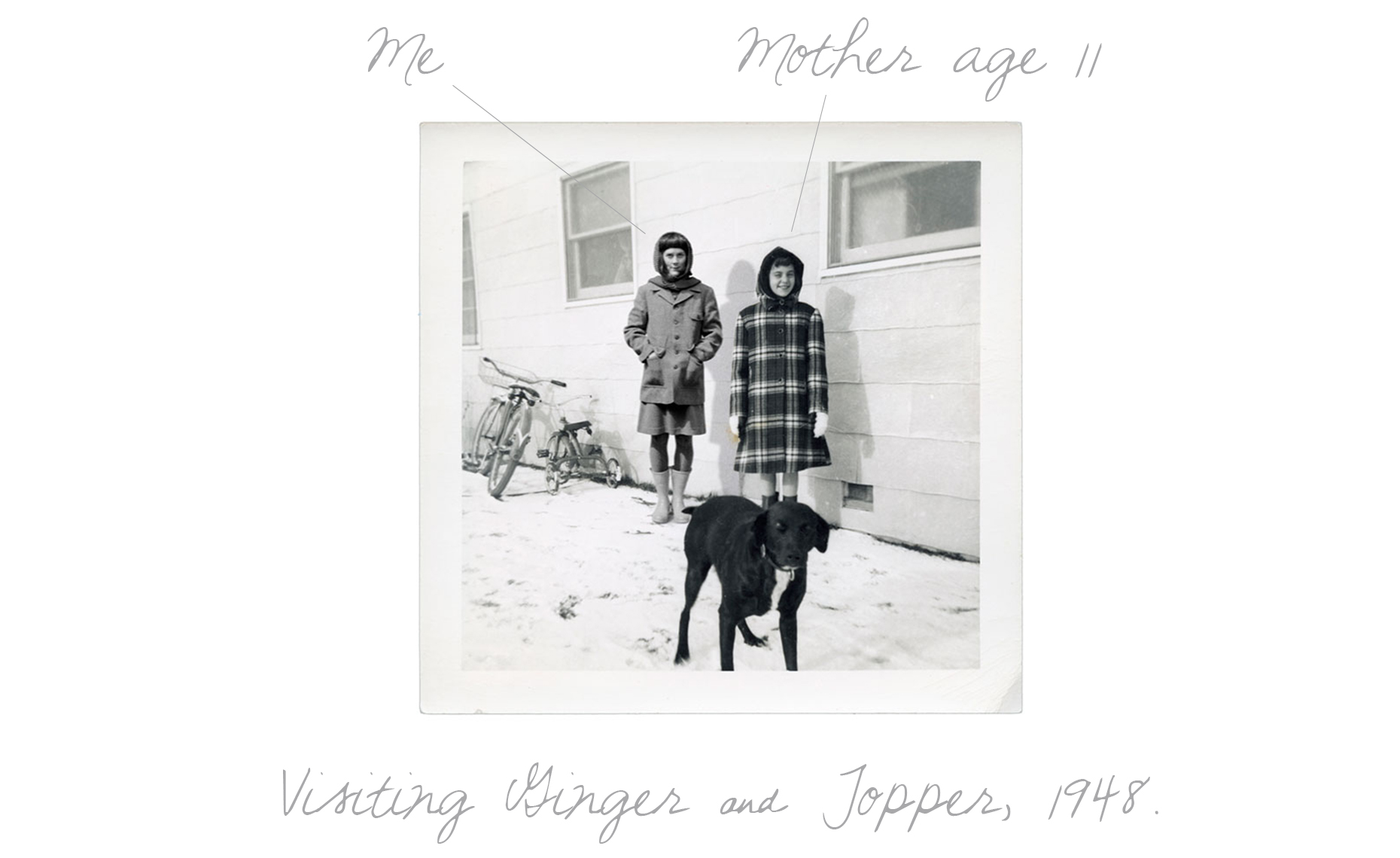 Visiting Ginger and Topper 1948 TXT